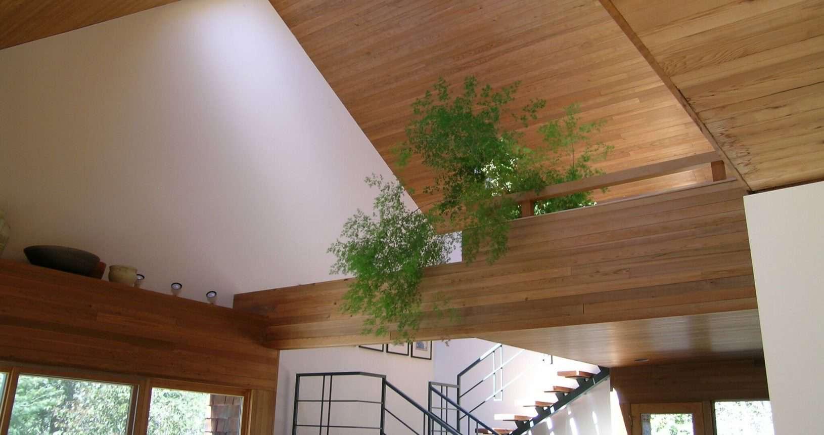 architect interior wood design
